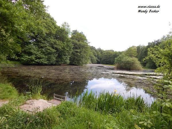 18.05.2014 - 25.05.2014 - Urlaub in Darlingeroda (Harz) 132