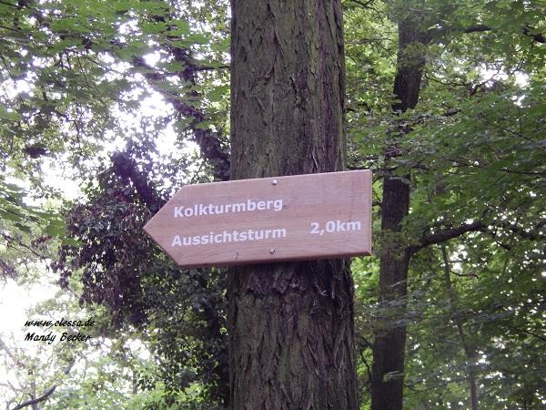 24.06.2014 - Dölauer Heide 042